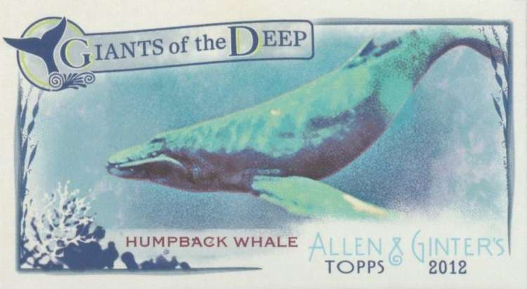2012 Allen and Ginter  Mini Giants of the Deep