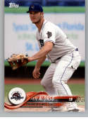 2018 Topps Pro Debut Minor League Baseball Trading Card #102 Pete Alonso Binghamton Rumble Ponies
