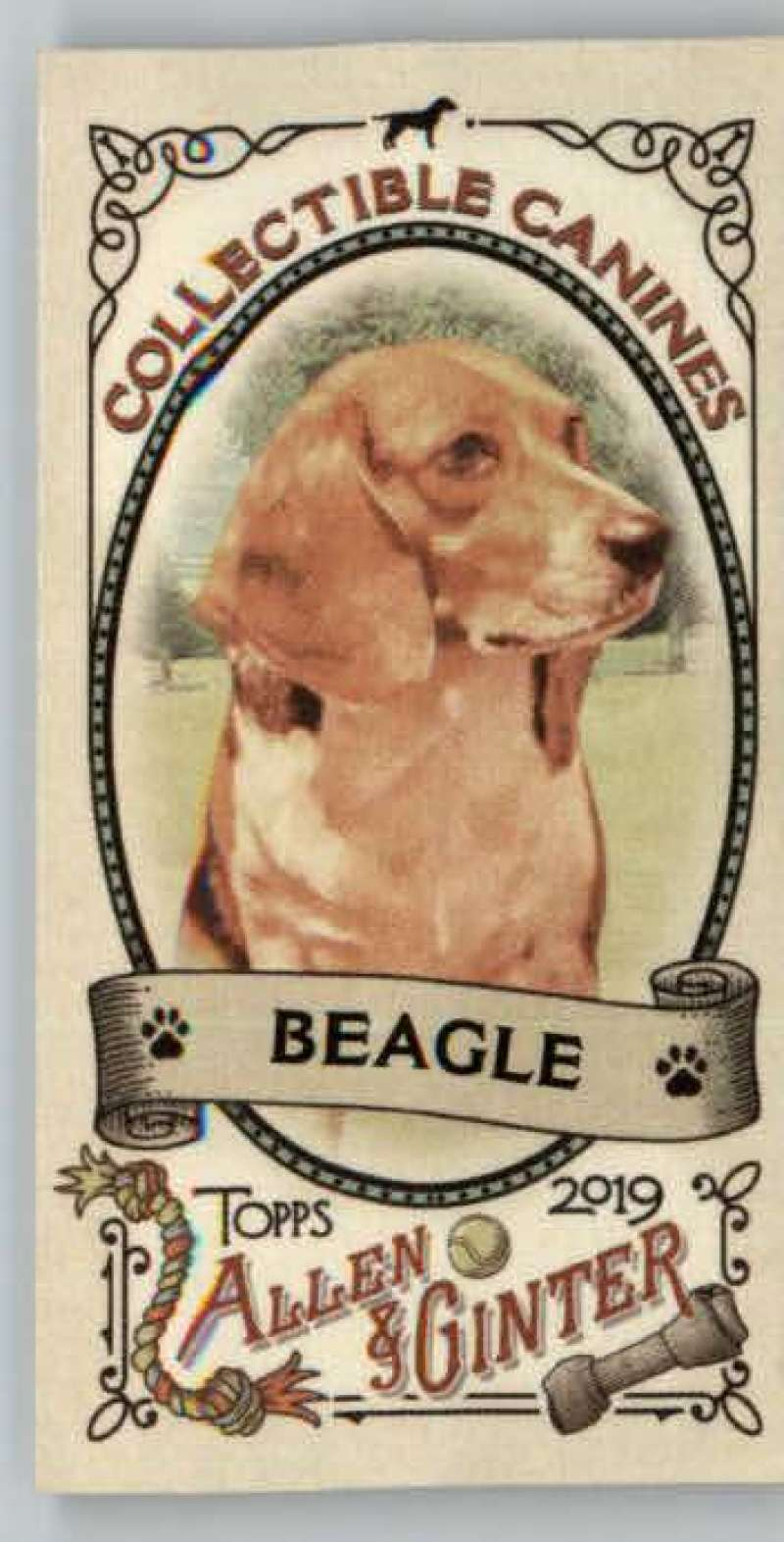2019 Allen and Ginter  Collectible Canines Mini