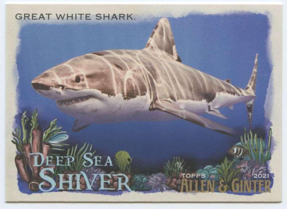 2021 Allen and Ginter  Deep Sea Shiver