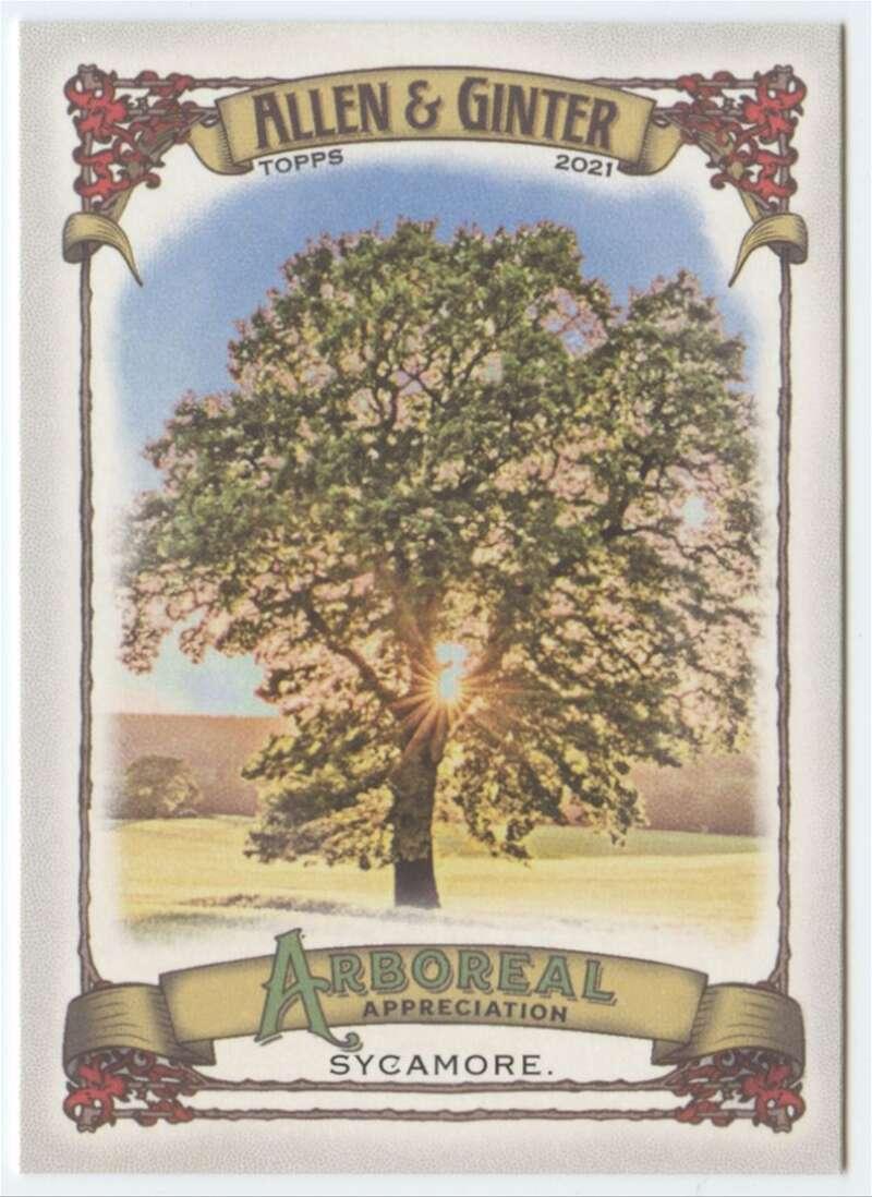 2021 Allen and Ginter  Arboreal Appreciation