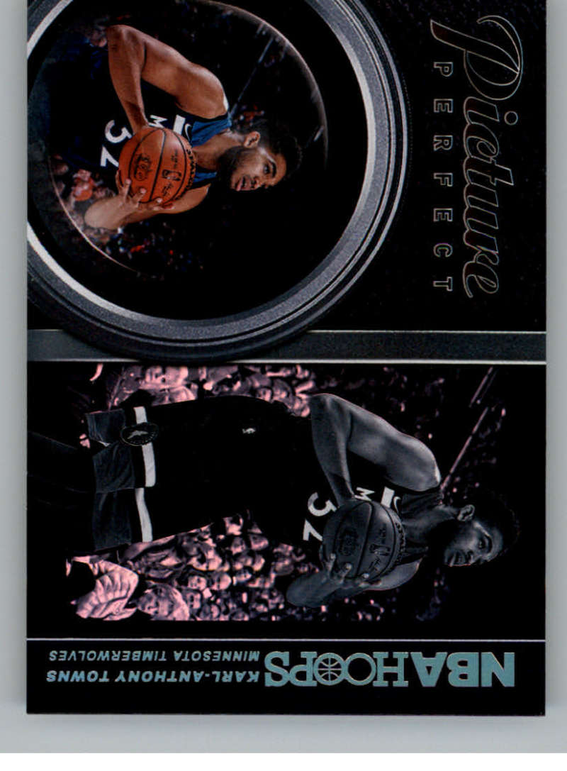 2018-19 Panini Hoops Picture Perfect