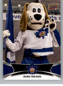 2016-17 Upper Deck AHL Team Mascots #TM27 Duke The Dog Toronto Marlies   Official American Hockey League UD Trading Card