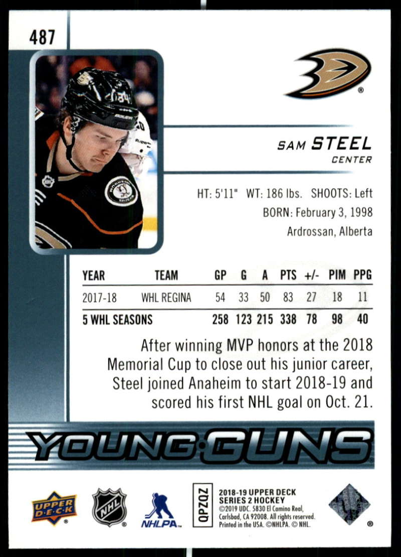 2018-19-Upper-Deck-Series-2-Young-Guns-Rookie-Cards-RC-Hockey-Singles-You-Pick miniature 41