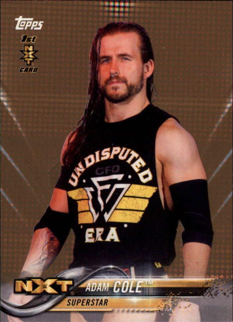 2018 Topps WWE Bronze