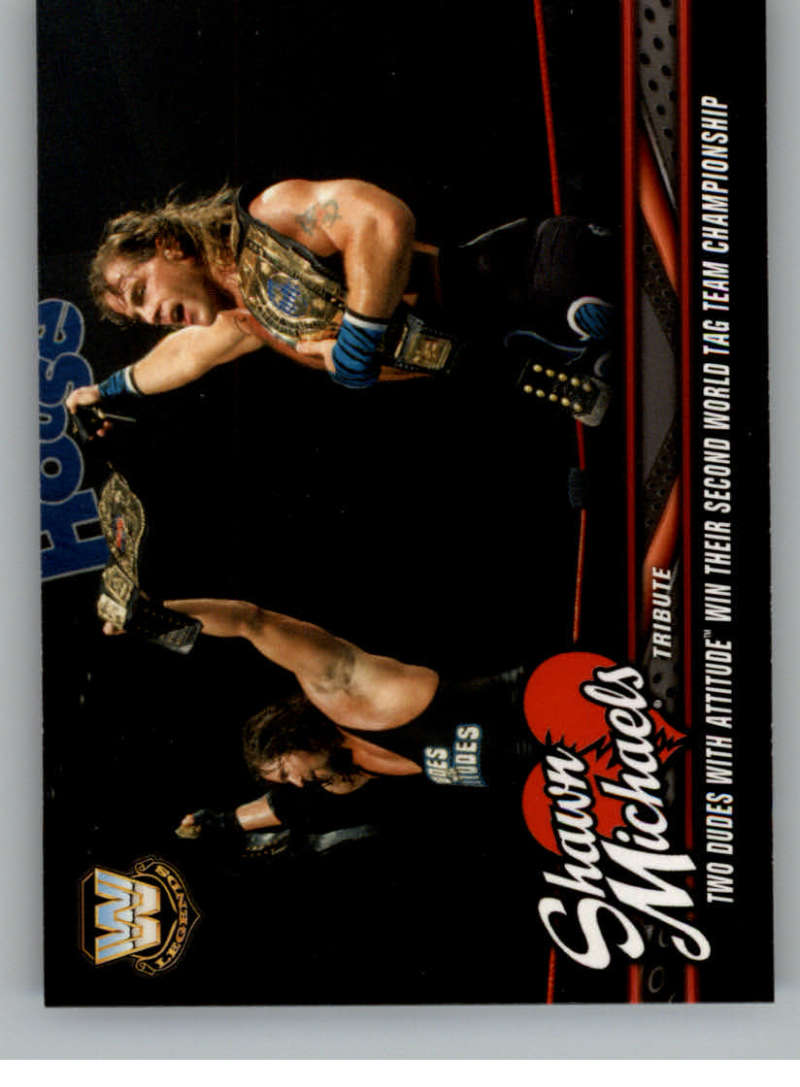 2018 Topps WWE Shawn Michaels Tribute Part 2