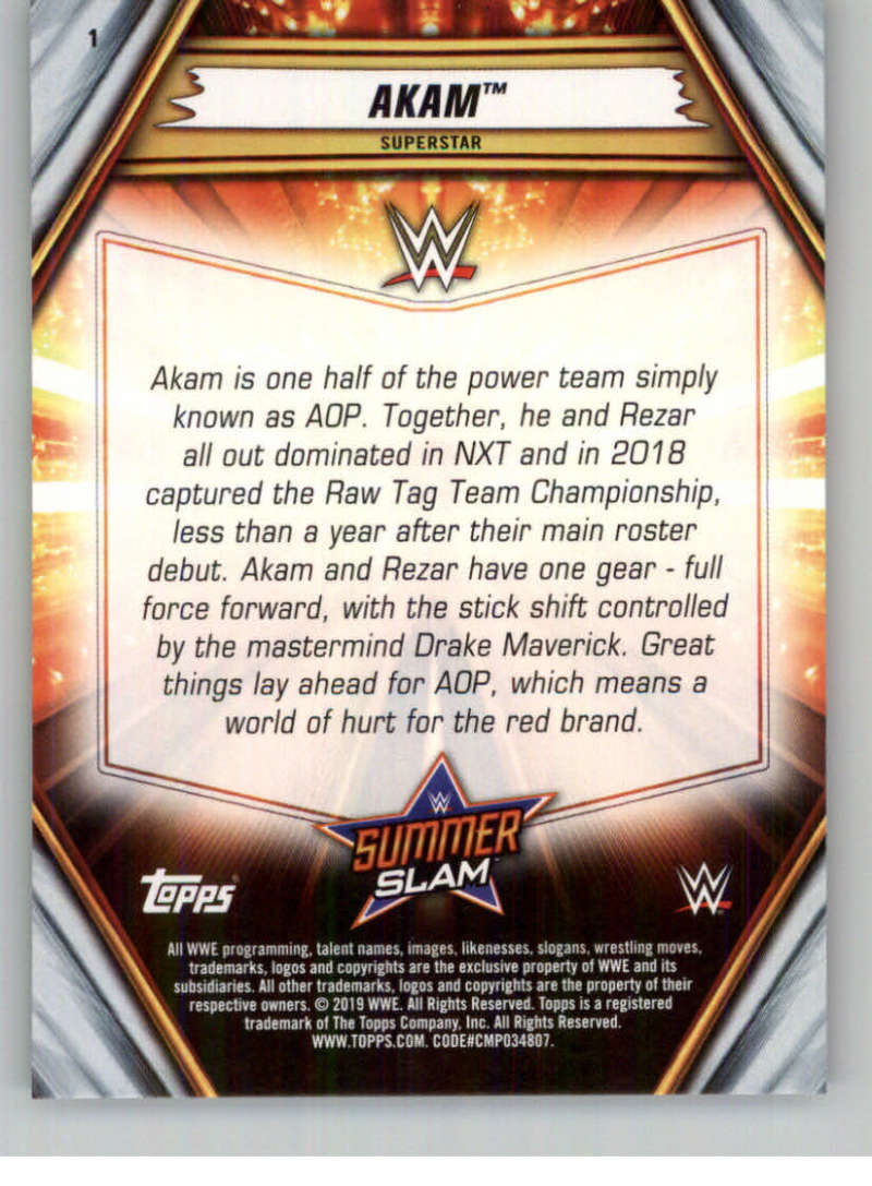 2019-WWE-Topps-SummerSlam-Parallels-Logo-Mat-Shirt-Relics-Pick-Your-Cards-Lot thumbnail 3