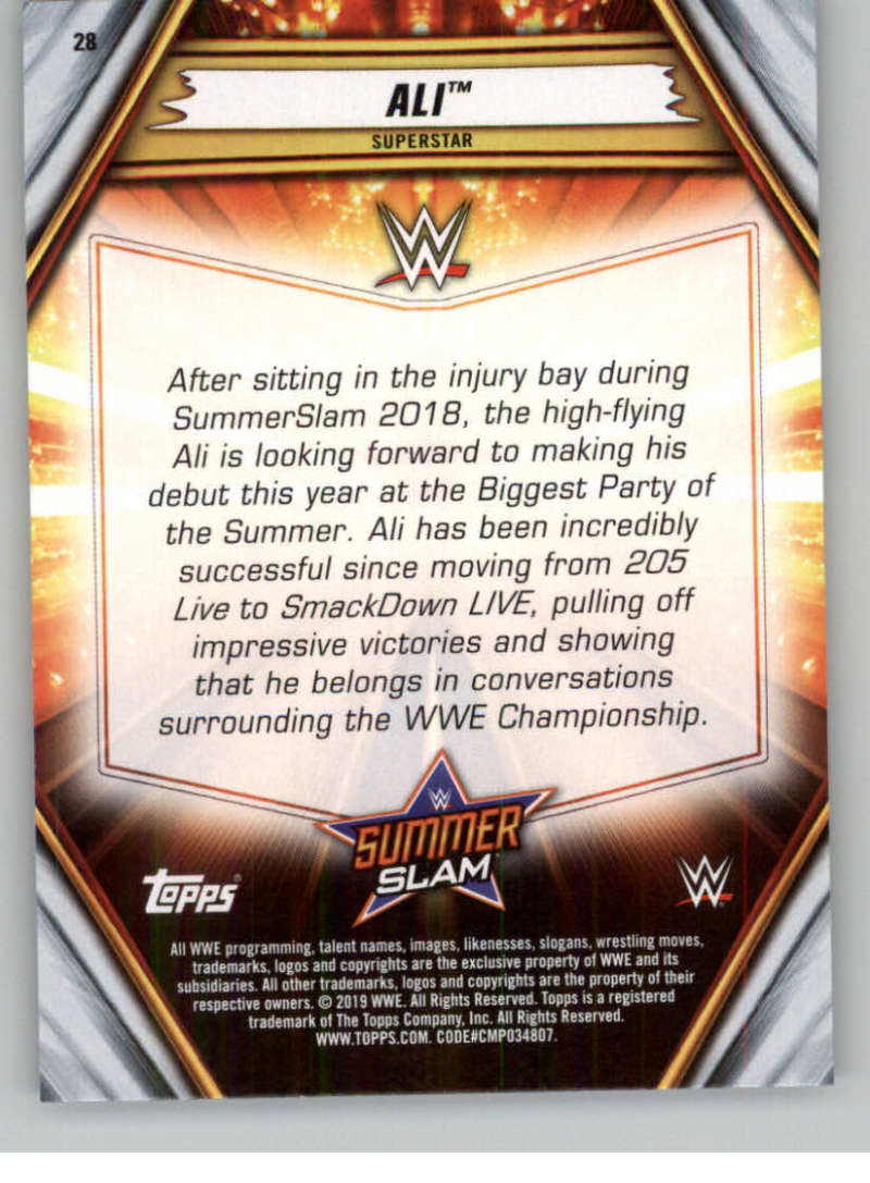 2019-WWE-Topps-SummerSlam-Parallels-Logo-Mat-Shirt-Relics-Pick-Your-Cards-Lot thumbnail 35